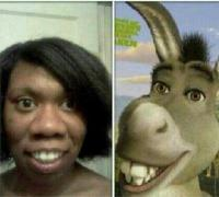 4. O burro do Shrek